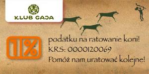 Darmowy program PIT 2014