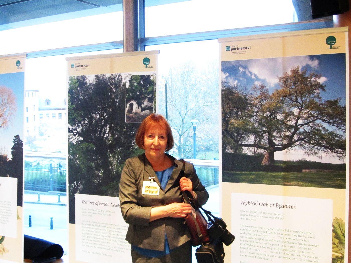 europejskie_drzewo_roku_2014-6