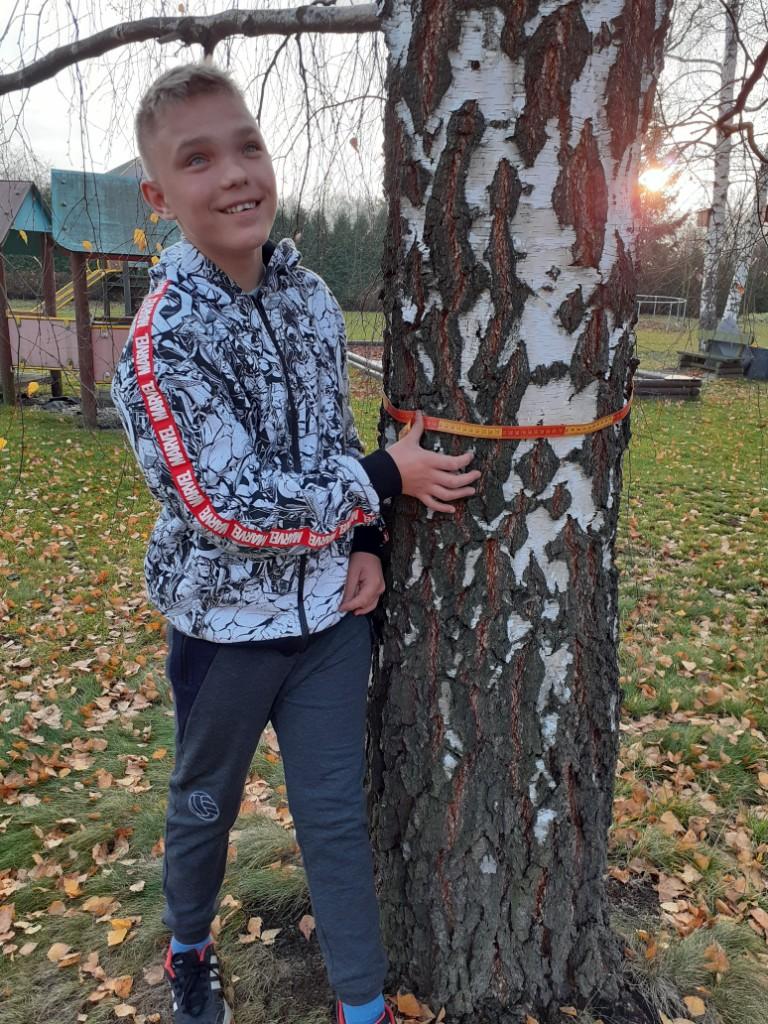 17. Swięto Drzewa