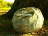 Kamień pamiątkowy Dębu Słowianin z Dębiny, fot. Wojciech Grzanka