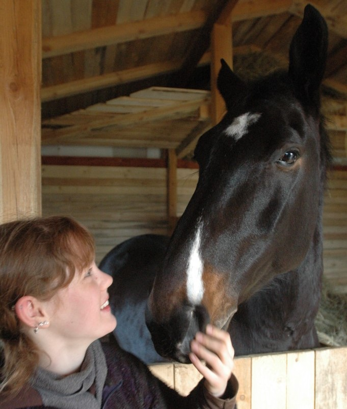 Pegaz - pierwszy koń uratowany przez Klub Gaja