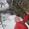 Tree Hunter Rob McBride u Słowianina