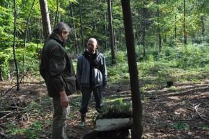 Nadleśnictwo Bielsko-Biała, sadzenie drzew.