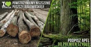 Kocham Puszczę - petycja