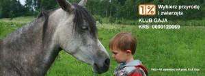 1 procent dla koni