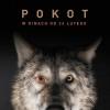POKOT_OK_PLAKAT_NEW