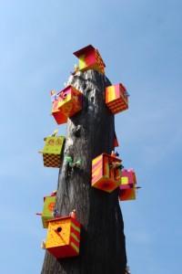 15_kolorowe_drzewo