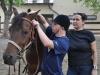 Hipoterapia to nie tylko jazda konna, to również praca przy koniach, czyszczenie zwierząt, karmienie przygotowywanie koni do zajęć i oporządzanie ich po zajęciach. Fot. Klub Gaja. — w miejscu: Zespół Szkół Specjalnych nr 4 w Sosnowcu