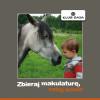 Zbieraj makulaturę, ratuj konie