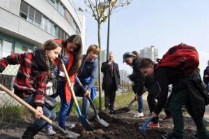 Inaguarcja programu Święto Drzewa 2013 w Katowicach