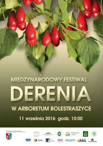 Plakat Festiwal Derenia