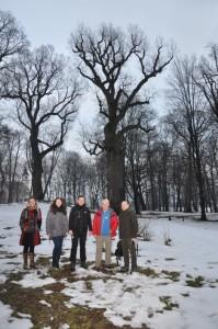 tree_hunter_wisniowa